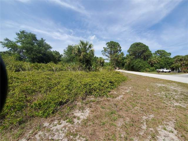 13290 Clarence Lane, Port Charlotte, FL 33981 (MLS #D6119622) :: RE/MAX Marketing Specialists