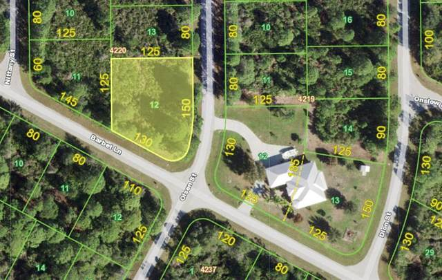 14086 Barbet Lane, Port Charlotte, FL 33981 (MLS #D6119674) :: Century 21 Professional Group