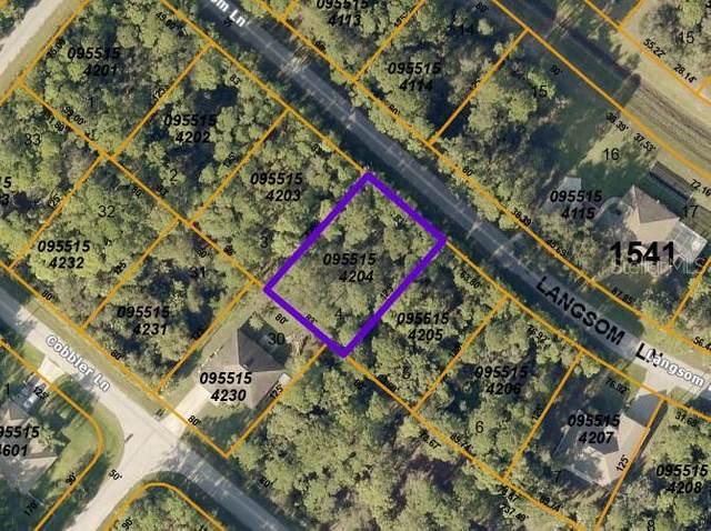 Langsom Lane, North Port, FL 34286 (MLS #D6119676) :: Team Pepka