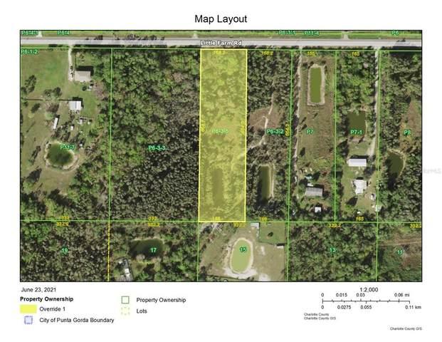 41481 Little Farm Road, Punta Gorda, FL 33982 (MLS #D6119686) :: Zarghami Group