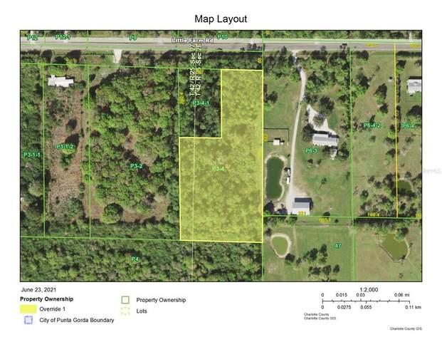 39991 Little Farm Road, Punta Gorda, FL 33982 (MLS #D6119694) :: Zarghami Group