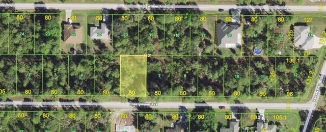 23300 & 23308 Cherrywood Avenue, Port Charlotte, FL 33980 (MLS #D6119901) :: Zarghami Group