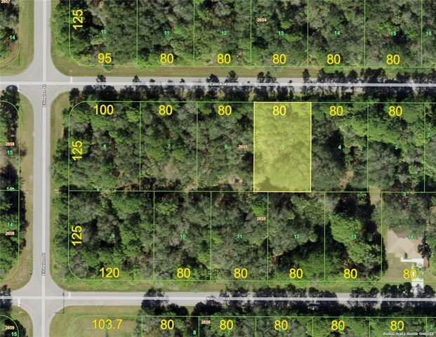 14231 Cain Avenue, Port Charlotte, FL 33953 (MLS #D6120136) :: Cartwright Realty