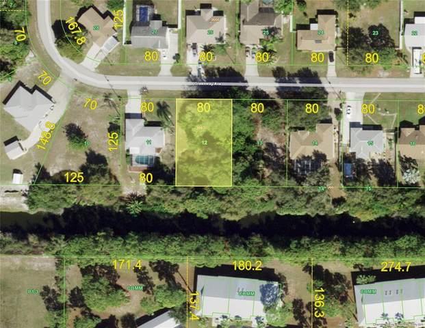 10317 Greenway Avenue, Englewood, FL 34224 (MLS #D6120178) :: Team Turner