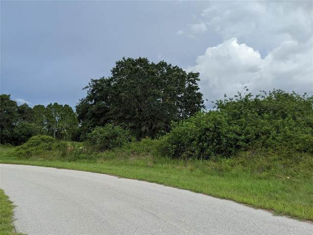 Amish Circle, North Port, FL 34288 (MLS #D6120227) :: Gate Arty & the Group - Keller Williams Realty Smart