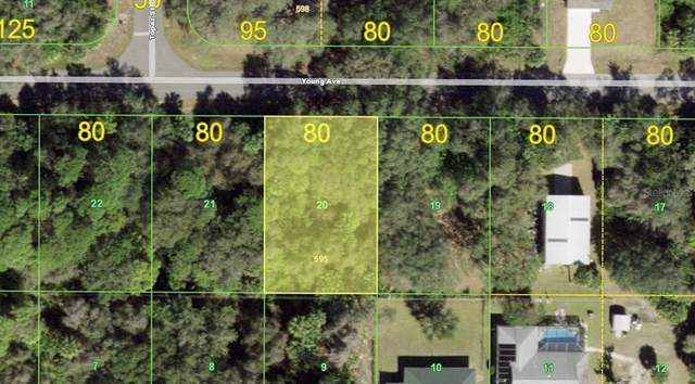 17359 Young Avenue, Port Charlotte, FL 33948 (MLS #D6120234) :: Everlane Realty