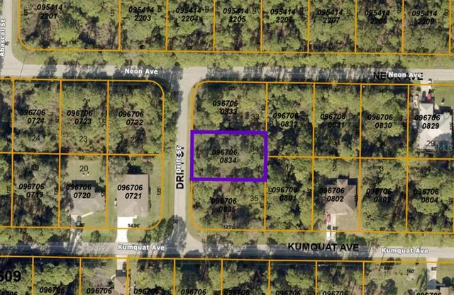 Lot 34 Drift Street, North Port, FL 34291 (MLS #D6120251) :: Zarghami Group