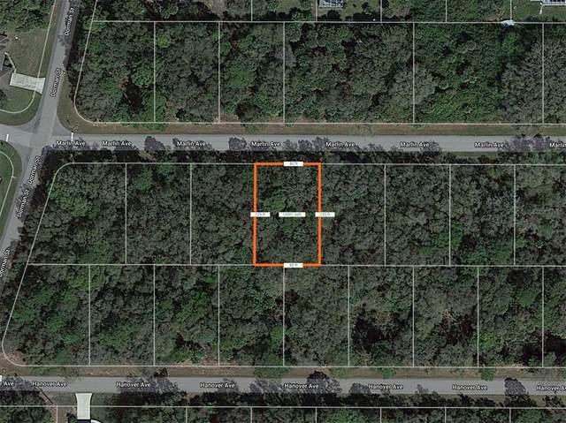 14155 Marlin Avenue, Port Charlotte, FL 33953 (MLS #D6120269) :: Everlane Realty