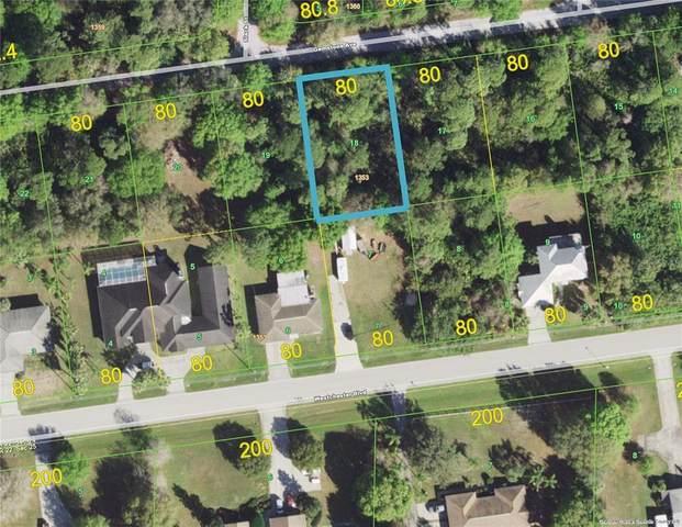 23451 Gemstone Avenue, Port Charlotte, FL 33980 (MLS #D6120308) :: Zarghami Group