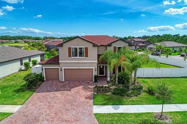 2359 Marton Oak Boulevard, North Port, FL 34289 (MLS #D6120316) :: Memory Hopkins Real Estate