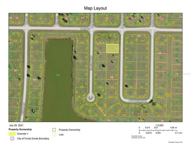 3 Bluebonnet Drive, Placida, FL 33946 (MLS #D6120400) :: Cartwright Realty