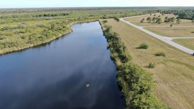 12308 Blue Marlin Road, Placida, FL 33946 (MLS #D6120413) :: Cartwright Realty