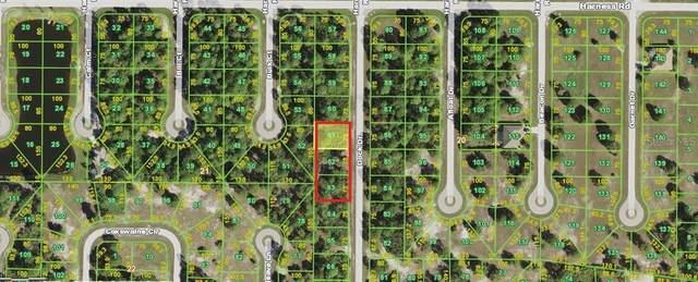 34 Dock Drive, Placida, FL 33946 (MLS #D6120459) :: Cartwright Realty
