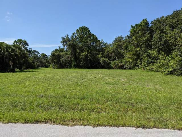 139 Sunset Road N, Rotonda West, FL 33947 (MLS #D6120462) :: Carmena and Associates Realty Group