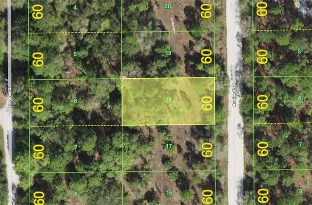13173 Avalon Drive, Punta Gorda, FL 33955 (MLS #D6120466) :: EXIT Gulf Coast Realty