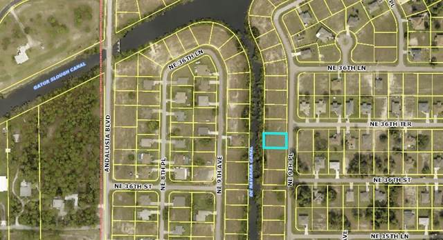 3610 NE 9TH Avenue, Cape Coral, FL 33909 (MLS #D6120559) :: Godwin Realty Group