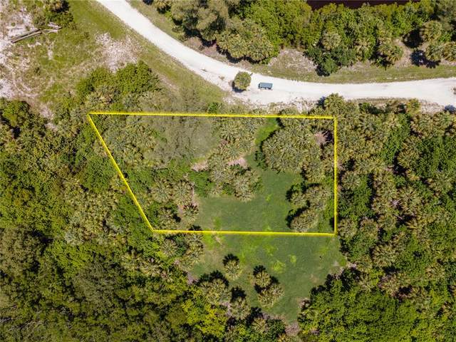 Blk 1 Lots 1 and 2 Palm Point Way, Placida, FL 33946 (MLS #D6120635) :: The BRC Group, LLC