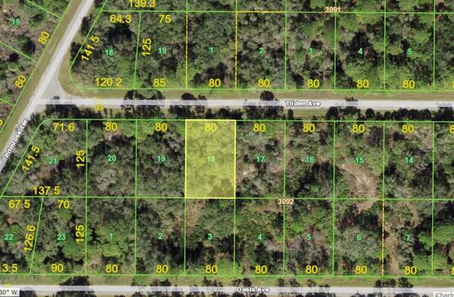 15477 Tilden Avenue, Port Charlotte, FL 33953 (MLS #D6120667) :: Globalwide Realty