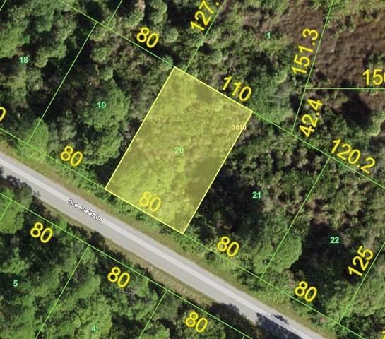 12344 Greenleaf Lane, Port Charlotte, FL 33953 (MLS #D6120899) :: Team Turner