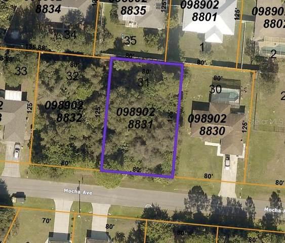 Mocha Avenue, North Port, FL 34287 (MLS #D6120969) :: The Nathan Bangs Group