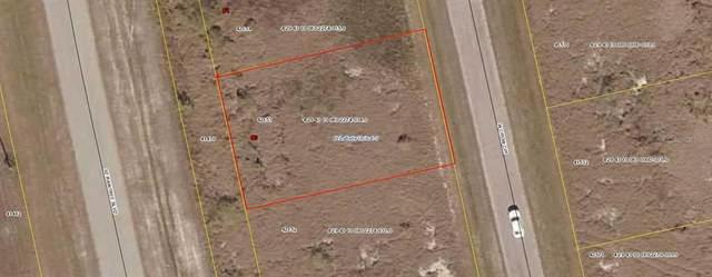 9007 W Crow Circle, Labelle, FL 33935 (MLS #D6121033) :: Vacasa Real Estate