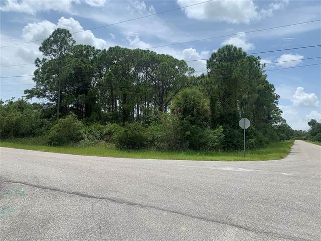 14073 Naylor Avenue, Port Charlotte, FL 33981 (MLS #D6121094) :: Prestige Home Realty
