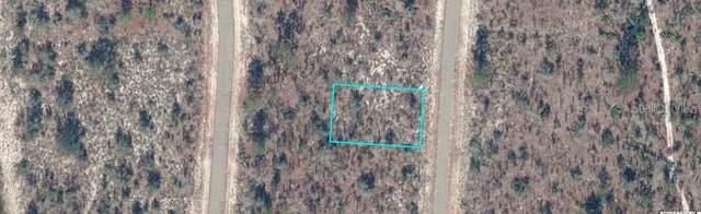 Alexander Drive, Chipley, FL 32428 (MLS #D6121118) :: RE/MAX Elite Realty