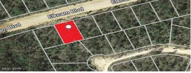 Elkcam Boulevard, Chipley, FL 32428 (MLS #D6121145) :: Everlane Realty