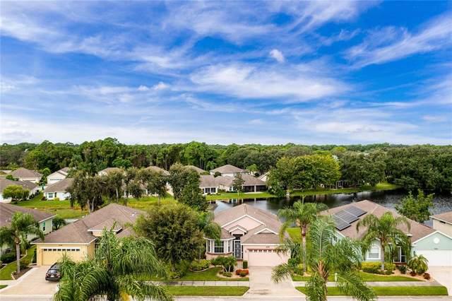 429 Tomoka Drive, Englewood, FL 34223 (#D6121271) :: Caine Luxury Team