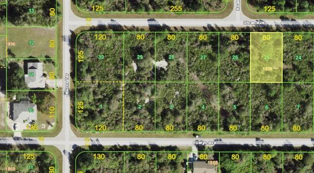 12411 Divan Avenue, Port Charlotte, FL 33981 (MLS #D6121290) :: Team Bohannon