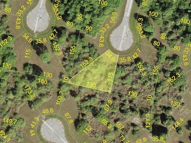 12487 Batfish Court, Placida, FL 33946 (MLS #D6121296) :: Gate Arty & the Group - Keller Williams Realty Smart