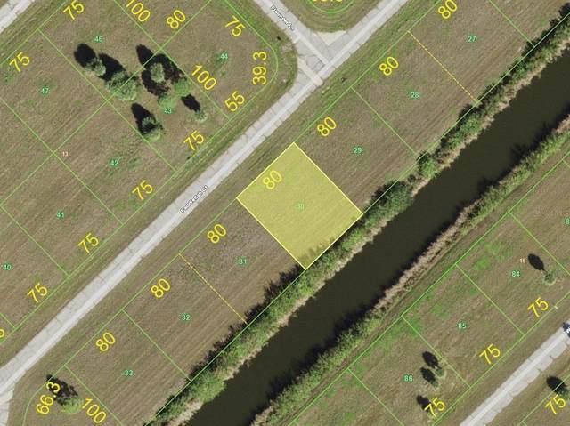 12176 Paddlefish Court, Placida, FL 33946 (MLS #D6121304) :: Gate Arty & the Group - Keller Williams Realty Smart