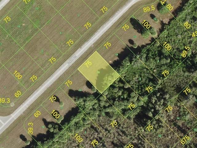 8 Dogwood Lane, Placida, FL 33946 (MLS #D6121322) :: Team Turner