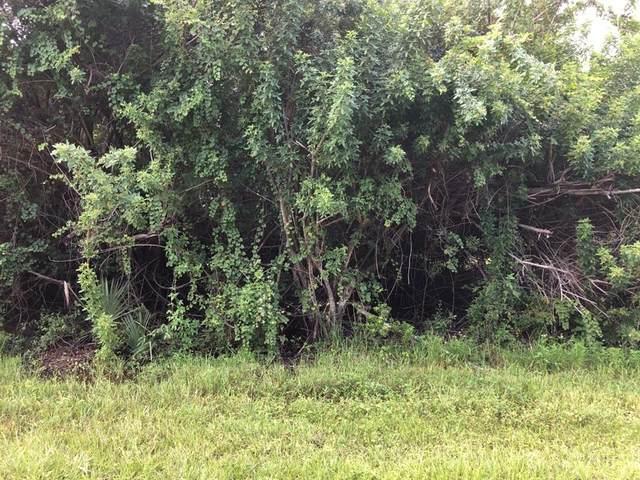 5339 Dayton Lane, Port Charlotte, FL 33981 (MLS #D6121474) :: The Hustle and Heart Group