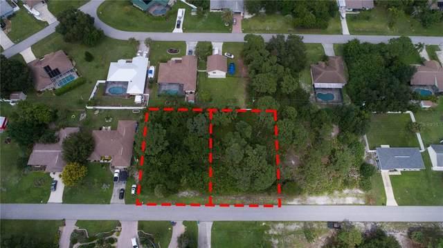 10102 Seabrook Avenue, Englewood, FL 34224 (MLS #D6121489) :: GO Realty