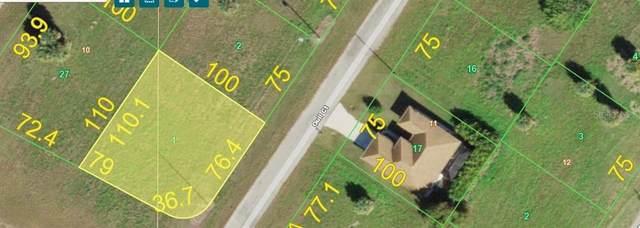 1 Gull Court, Placida, FL 33946 (MLS #D6121535) :: Carmena and Associates Realty Group