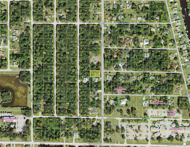 3447 Pellam Boulevard, Port Charlotte, FL 33948 (MLS #D6121622) :: Everlane Realty