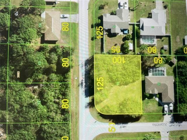 11225 Carnegie Avenue, Englewood, FL 34224 (MLS #D6121776) :: Everlane Realty