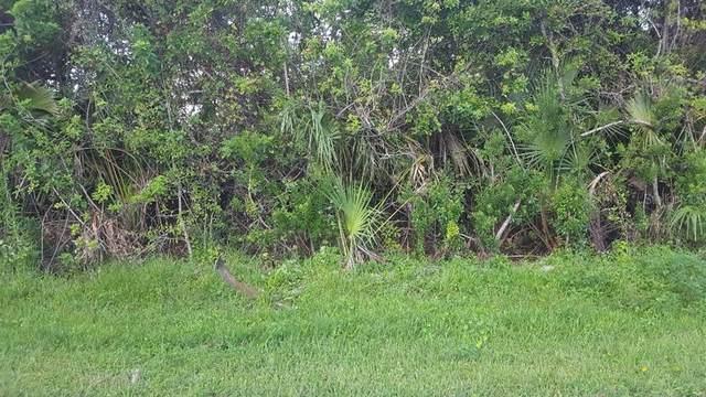 6181 Marcum Street, Englewood, FL 34224 (MLS #D6121825) :: Vacasa Real Estate