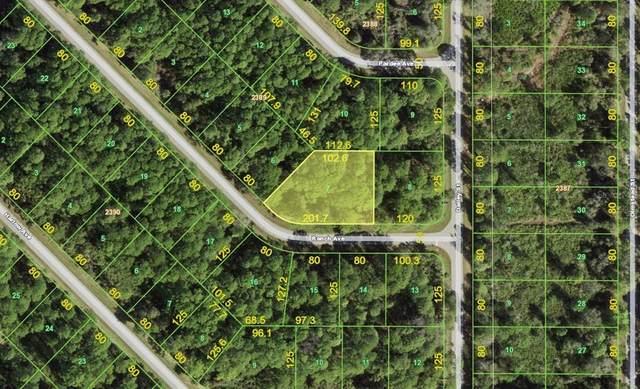 12550 Ranch Avenue, Port Charlotte, FL 33953 (MLS #D6121846) :: Expert Advisors Group