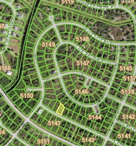 13142 Rouding Circle, Port Charlotte, FL 33981 (MLS #D6121901) :: The Light Team