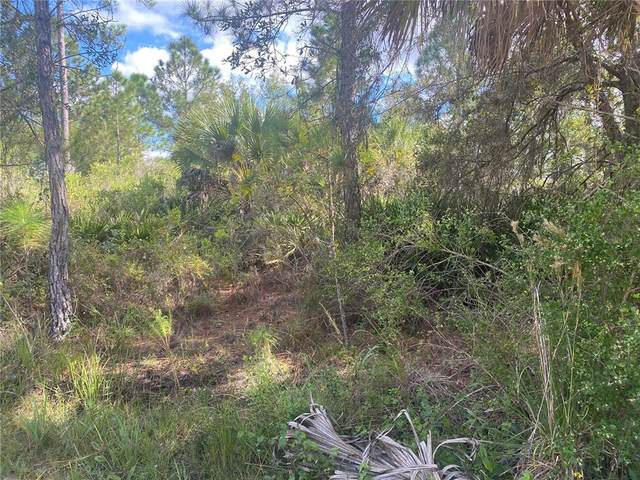 Lot 6 Beckwith Avenue, North Port, FL 34291 (MLS #D6121937) :: Future Home Realty