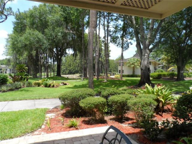 4770 Fox Hunt Drive 513 & 511, Wesley Chapel, FL 33543 (MLS #E2203831) :: The Duncan Duo & Associates