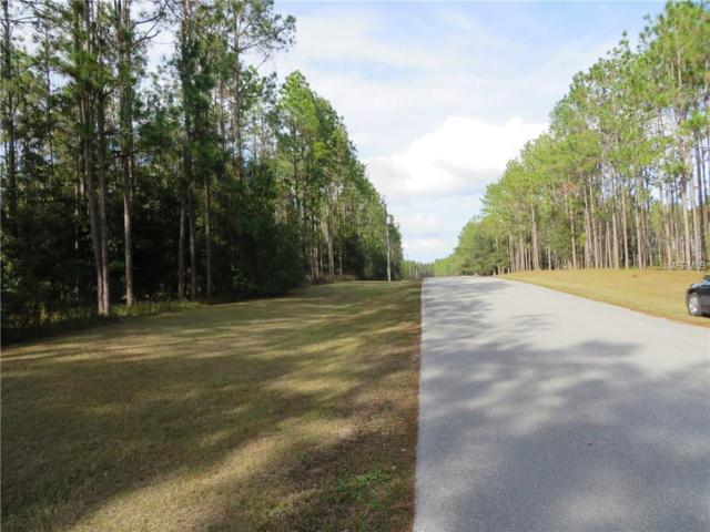 17321 Country Squire Lane, Dade City, FL 33523 (MLS #E2204076) :: G World Properties