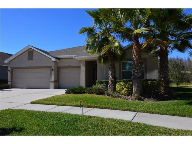 2541 Kenchester Loop, Wesley Chapel, FL 33543 (MLS #E2204241) :: The Duncan Duo & Associates