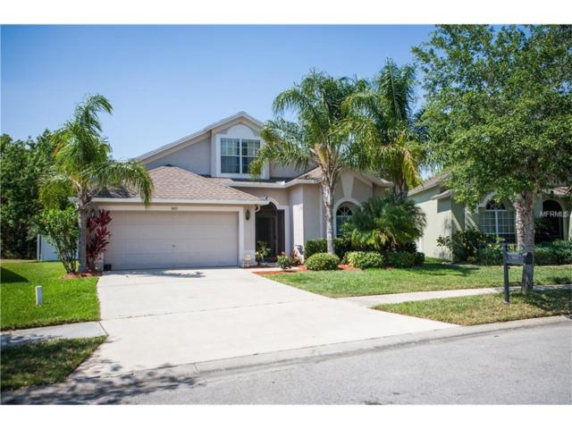 6813 Bluff Meadow Court, Wesley Chapel, FL 33545 (MLS #E2204574) :: The Duncan Duo & Associates