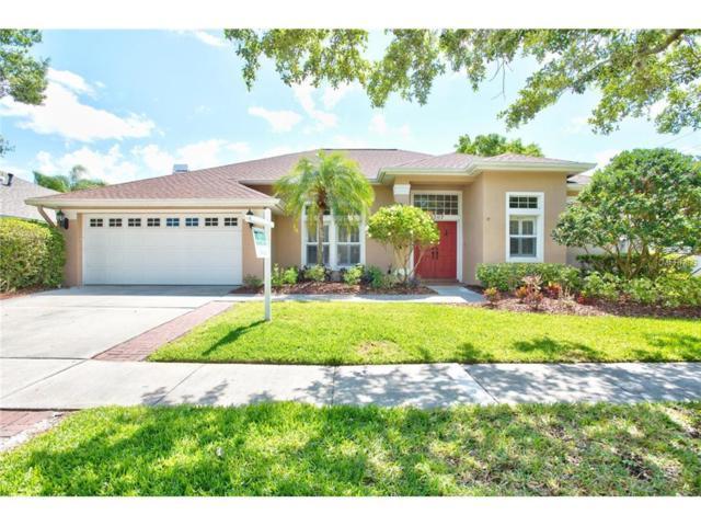 9207 Woodbay Drive, Tampa, FL 33626 (MLS #E2204613) :: The Duncan Duo & Associates