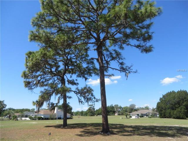 5445 Chestnut Ridge Road, Ridge Manor, FL 33523 (MLS #E2204623) :: Griffin Group