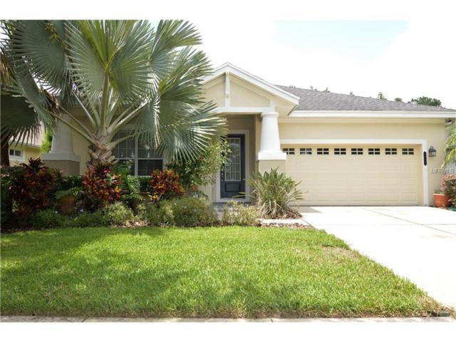 8032 Hampton Lake Drive, Tampa, FL 33647 (MLS #E2204810) :: Team Bohannon Keller Williams, Tampa Properties