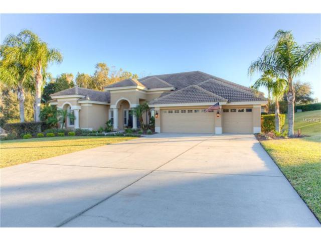 13740 Thoroughbred Drive, Dade City, FL 33525 (MLS #E2204959) :: Team Bohannon Keller Williams, Tampa Properties